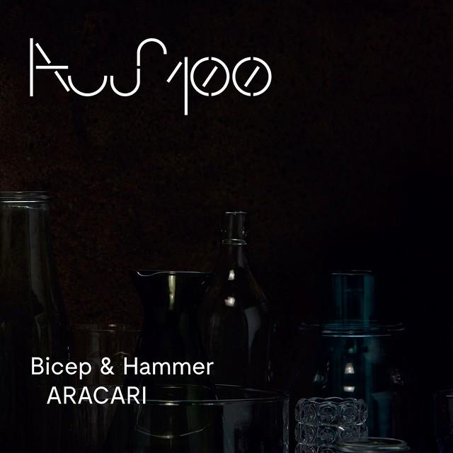"Bicep & Hammer: ""ARACARI"""