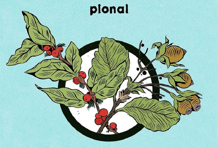 "Pional: ""Casualty"""