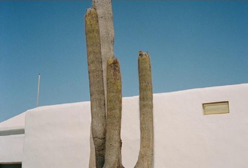 "Koraal: ""La Casa del Volcán"" LP"